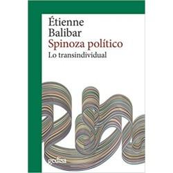 Spinoza político